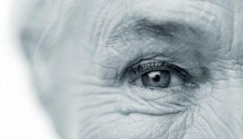 Eyes1Duo
